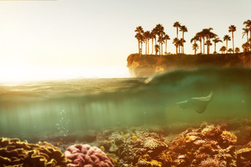 Unterwasserlandschaft mit Korallenriff