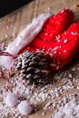 Guanto natalizio con pigna