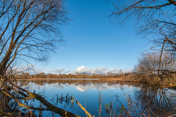 autumn landscape. beautiful lake with bushes and trees on the coast