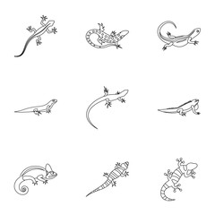 Varan icons set. Outline illustration of 9 varan vector icons for web