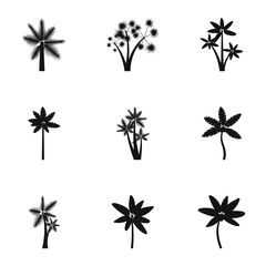 Different palm icons set. Simple illustration of 9 different palm vector icons for web