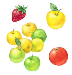 fruits painted in watercolor