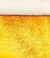 beer closeup alcohol drink beverage