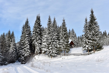 Mountain wooden chalet covered with fresh snow