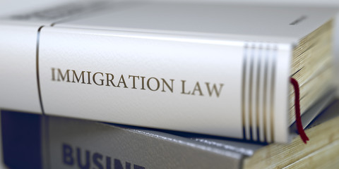 Book Title on the Spine - Immigration Law. 3D.