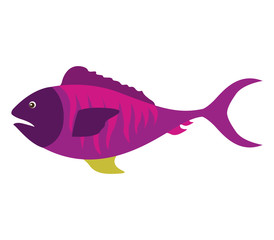 colorful silhouette with sea fish purple vector illustration