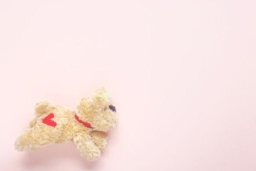 cute puppy doll running on pink pastel background
