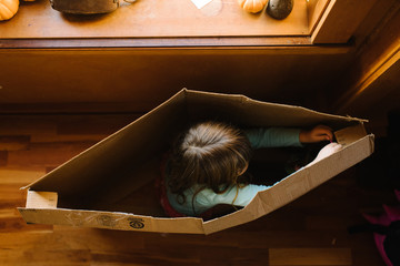 Girl playing in cardboard box, overhead view