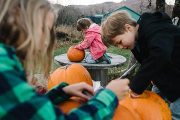 Three children outdoors, carving pumpkins