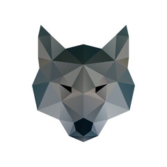 Low poly illustration. Wolf