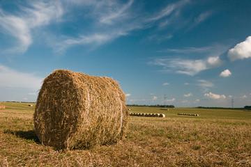 Fototapete - Rural landscape. Hay bales on the field after harvest