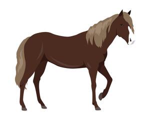 Sorrel Horse Vector Illustration in Flat Design