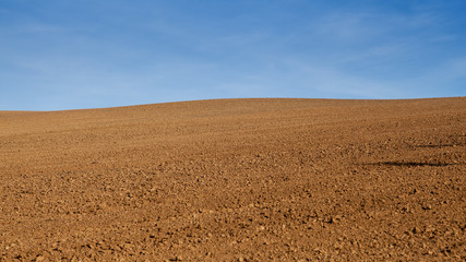 Large field prepared for sowing.