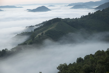 Top view point mist mountain (Phu Pha Duck),Ban muang,Nong khai province,the northeastern region of Thailand.