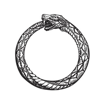 Ouroboros. Snake eating its own tail. Eternity or infinity symbol