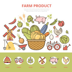 Linear flat Agriculture infographics template website vector.