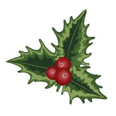 Sprig of Holly, mistletoe