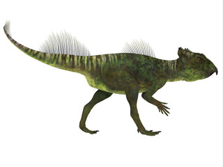 Archaeoceratops Dinosaur Side Profile - Archaeoceratops was a Ceratopsian herbivorous dinosaur that lived in China in the Cretaceous Period.