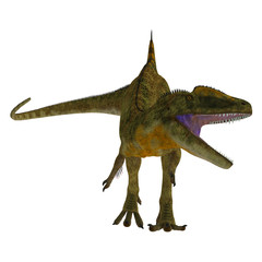Concavenator Dinosaur on White - Concavenator was a carnivorous theropod dinosaur that lived in Spain in the Cretaceous Period.
