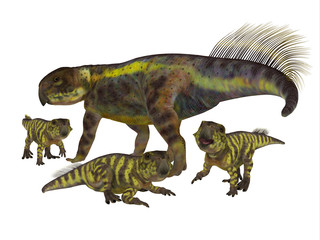 Psittacosaurus Mother with Offspring - Psittacosaurus was a Ceratopsian herbivorous dinosaur that lived in Asia in the Cretaceous Period.