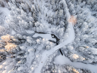 Snow covered trees and frozen river, Finland