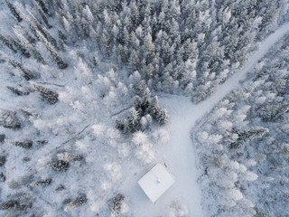 Snow covered trees and cabin, Finland