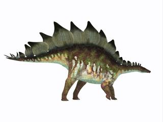 Stegosaurus Dinosaur Side Profile - Stegosaurus was an armored herbivorous dinosaur that lived in North America during the Jurassic Period.