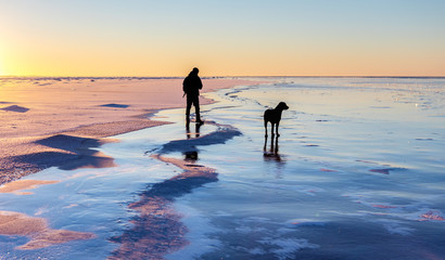 Man walking dog on icy sea, Finland
