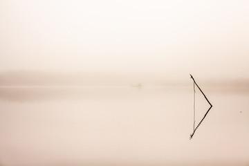 Twig in foggy lake, Finland