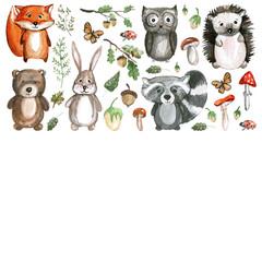 Cute woodland animals Watercolor images Kindergarten zoo icons