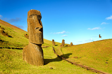 Moai in the hills of Easter Island
