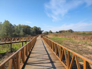 wooden bridge in Kopacvo Baranja