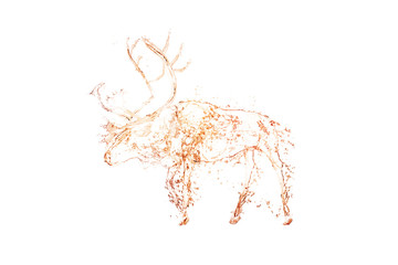 reindeer water