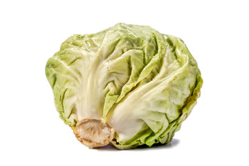 Head of cabbage with drops of water on a white background