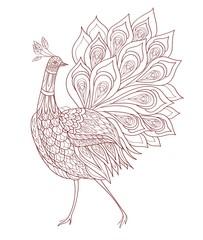 Coloring book page .Peacock ornamental. Fantasy bird. Vector illustration hand drawn. Thin line drawing.