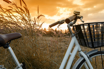 beautiful landscape image with Bicycle white at sunset