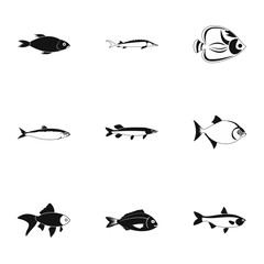 Species of fish icons set. Simple illustration of 9 species of fish vector icons for web