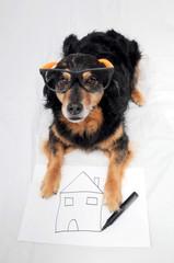 Drawing Dog