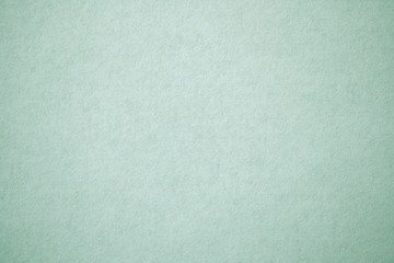 sage green paper texture Wall mural