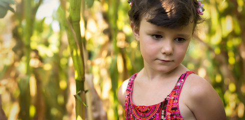 Countryside girl in corn field