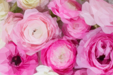 Low poly illustration Pink and white ranunculus flowers close up background