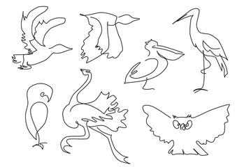 linear sketch birds silhouette