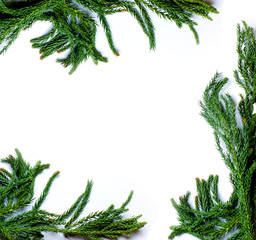 Christmas border frame made of fir tree branch isolated on white background. Flat lay. Concept New Year`s for congratulations card, market winter sale banner or poster with copyspace for your text.
