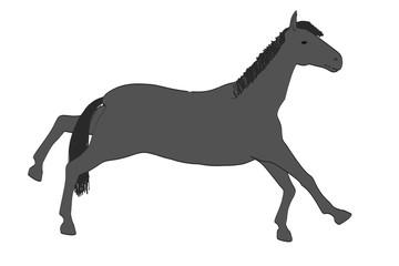 2d cartoon illustration of horse