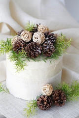 Layer Cake decorated with pine cones