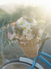 Flowers in basket of bicycle, close-up