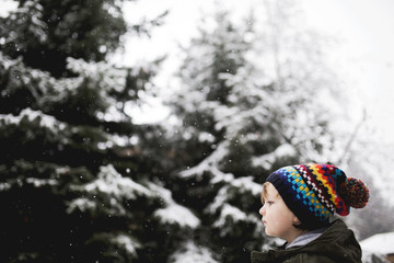 Young boy wearing winter clothes, standing beside snow covered Christmas trees