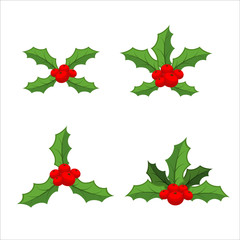 Sprig of mistletoe set. Traditional Christmas plant. Holiday red