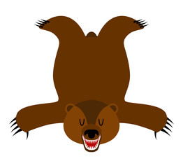 Grizzly Bearskin. Skin of bear isolated. Hunter trophy isolated.