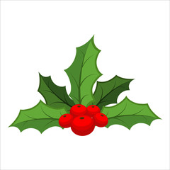 Mistletoe isolated. Traditional Christmas plant. Holiday red ber